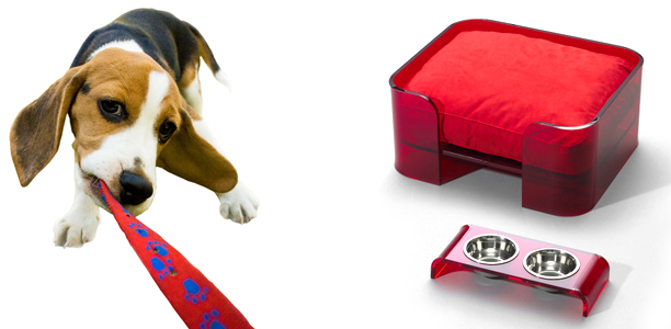 Modern Design accessories for Pets by WowBow